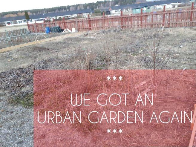 We got an urban garden again