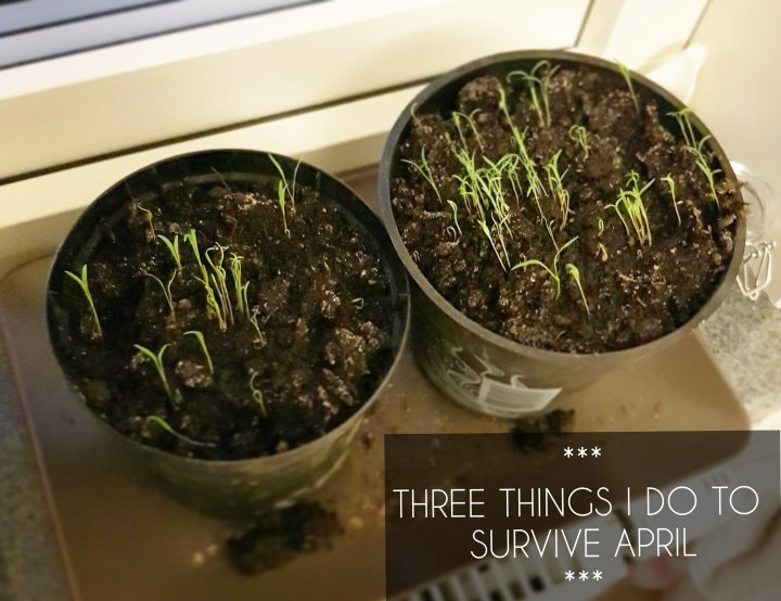 Three things I do to survive April