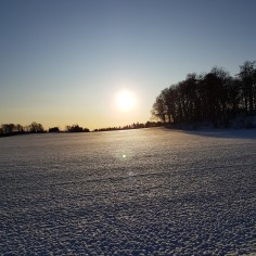 Sun over snowfield